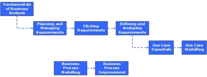 Business Analysis And Business Process Management Courses By